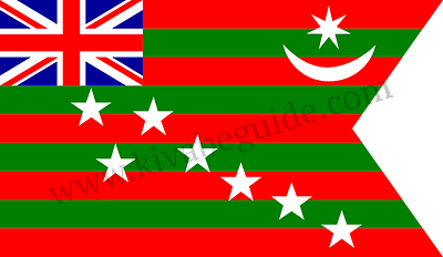 The Flag Of Home Rule Movement In 1917